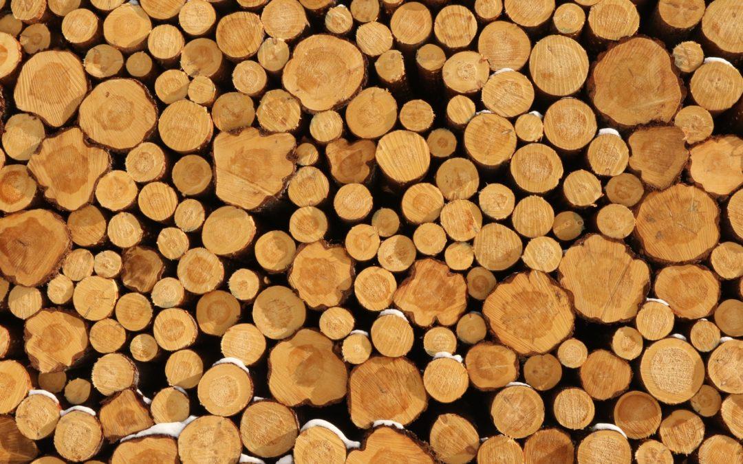 Tukkipuun hinta on noussut – nyt on oikea hetki puukaupoille