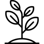 taimi-ikoni